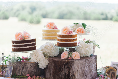 Papiers peints Biscuit Wedding Cake