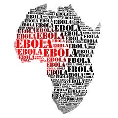 Ebola african virus disease and  hemorrhage fever