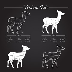 Venison meat cut diagram scheme - blackboard