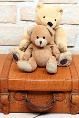 Zwei Teddybären auf altem antiken Lederkoffer