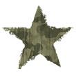 Camouflage star symbol.