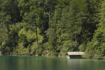 Green Alpsee lake with boating shed and trees, Germany.