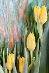 Gelbe Tulpen vor Holz Hintergrund