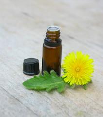 huiles essentielles de pissenlit