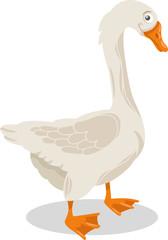 goose farm bird cartoon illustration