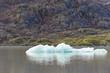 Ice on Mendenhall Glacier Lake