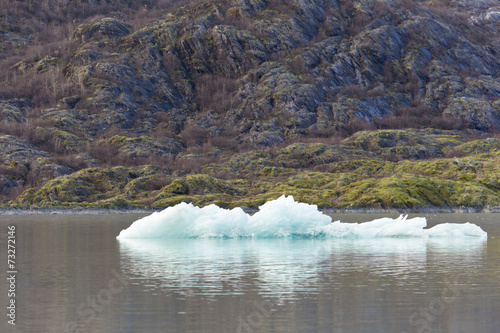 Foto op Canvas Gletsjers Ice on Mendenhall Glacier Lake