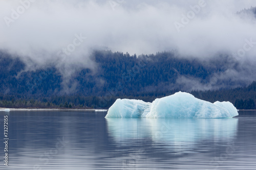 Foto op Canvas Gletsjers Melting iceberg in Mendenhall Lake
