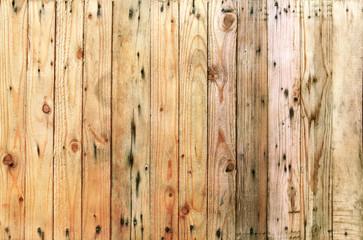 close up grain textures of arrangement bark wood in vertical row