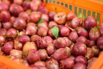 Shallot - asia red onion in the market