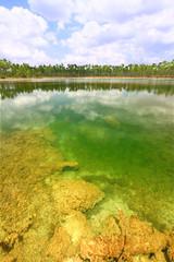 Everglades National Park USA