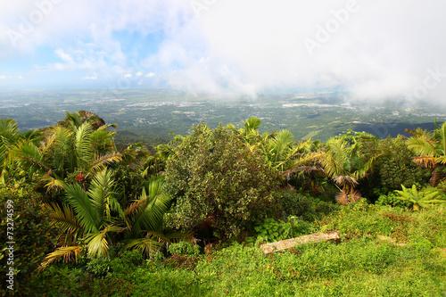 Fotobehang Caraïben Puerto Rico Landscape