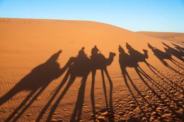 Caravan with tourists in the Sahara. Morocco, Africa