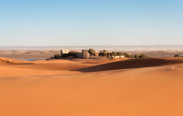 Oasis in the Sahara desert, Morocco, Africa
