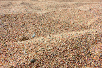surface of the sea beach with a pile of sand