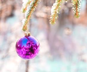 Ball on a Christmas green wood fur-tree
