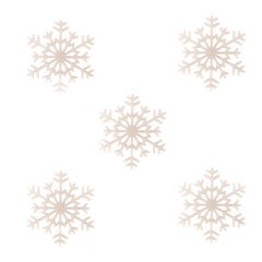 Five snowflakes isolated over white background