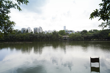 Lechee (Litchi) Park and beautiful lake