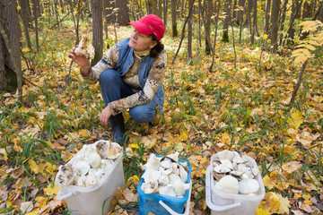 Women gathered mushrooms