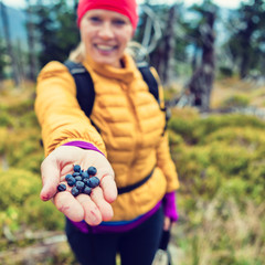 Woman hand giving blueberries in vintage forest
