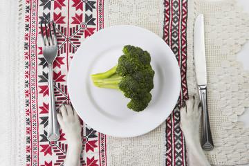 Vegetable dog diet