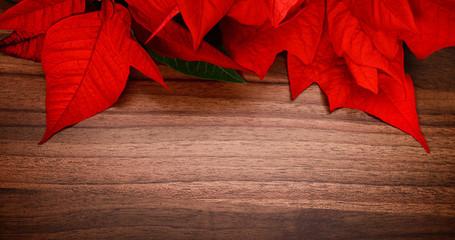 Hintergrund aus Weihnachtsstern auf Holz