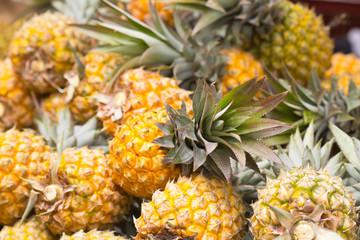 ananas Victoria, île de la Réunion