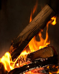 Close up of wood in a fire