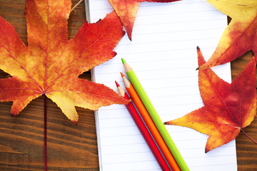 school colored pencils
