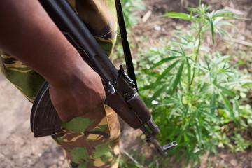 guerra a las drogas