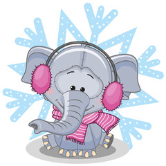 Elephant in a fur headphones