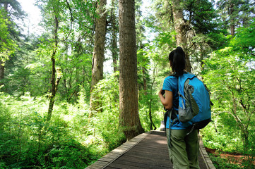 young woman tourist hiking at forest trail