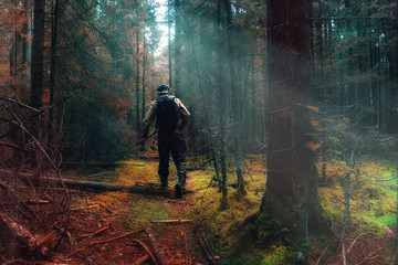 traveler in autumn mystical forest view from the back
