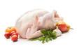 canvas print picture - Stuffed turkey