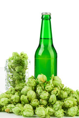Bottle of beer and hop.