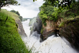 the Murchison Falls in Uganda (Africa)