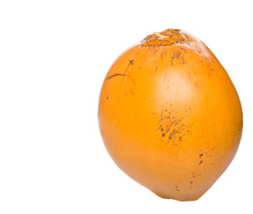 The Malayan Dwarf coconut over white background