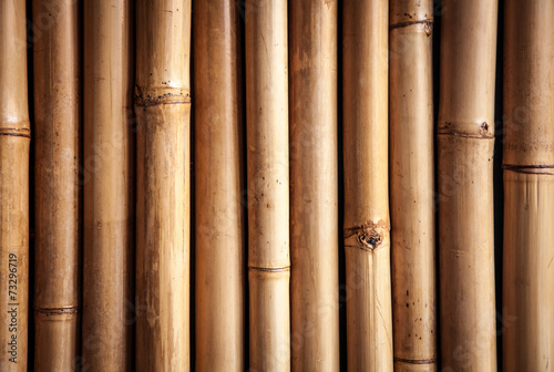 Poster Bamboe Bamboo close up, nice grunge texture
