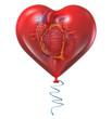 Obrazy na płótnie, fototapety, zdjęcia, fotoobrazy drukowane : Heart Health