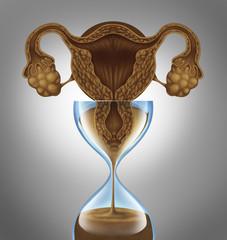 Female Biological Clock