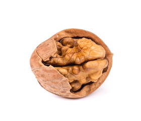 Close up of walnut