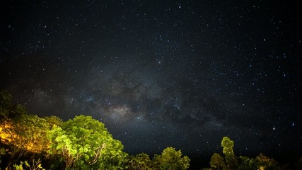 Milky way rising from behind rainforest time lapse