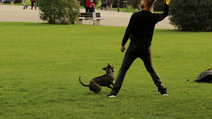 Man tossing toy to dogs, pet brings it back