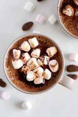 Mug of hot chocolate with toasted marshmallows
