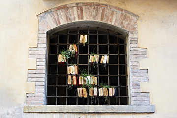 Old books in lattice window with sprouted plants