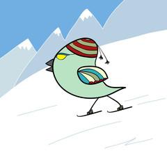 bird on skis