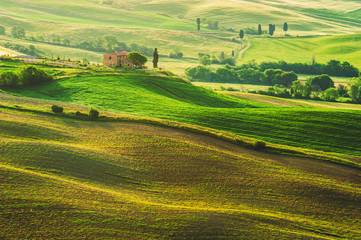 Spring field around Pienza, on the road between Siena and Rome