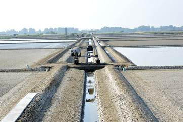 Irrigation and saltern