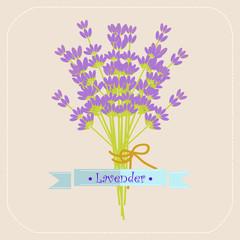 Lavender flowers icon