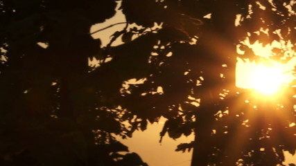 Sunrise at golf course